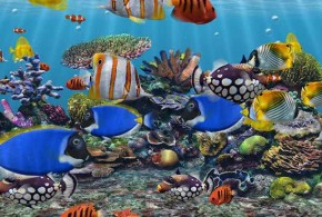 شاشة توقف 3D Fish School Screensaver 4.96.7 مدرسة الاسماك