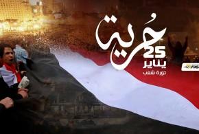خلفيات ثورة 25 يناير 25 january egypt - صور الثورة المصرية