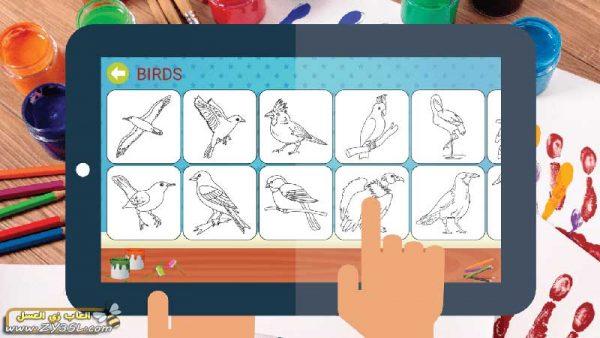 تعليم الطفل تلوين صور الطيور