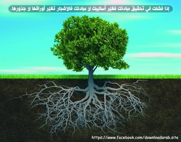 إذا فشلت في تحقيق مبادئك فغيّر أساليبك لا مبادئك فالأشجار تغيّر أوراقها لا جذورها.